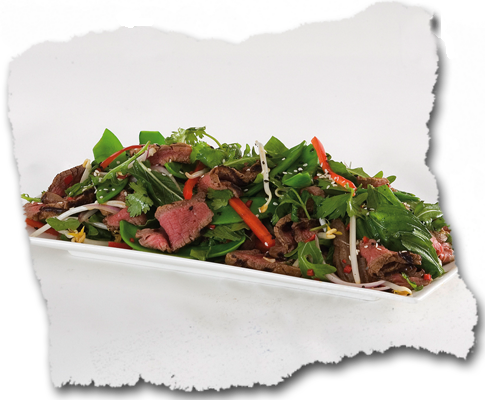 beef Asian salad cold