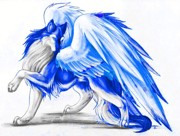 of anime Legend the blue wolves