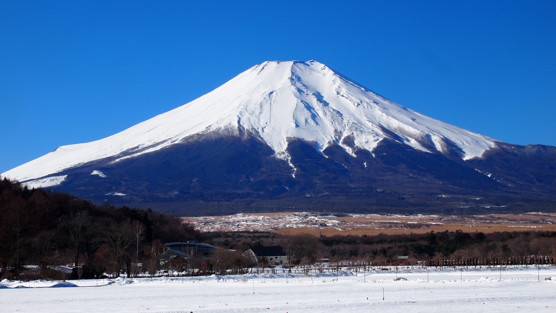 can winter in japan in do What you